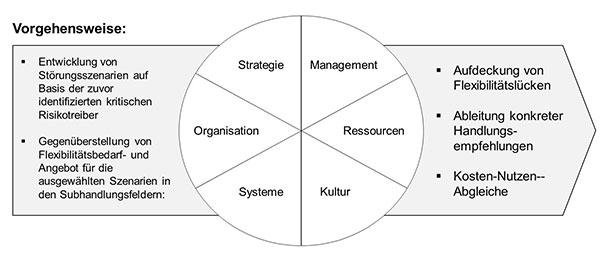 Abb. 2: Vorgehensweise in Phase 3 - Handlungsfelder und Maßnahmen
